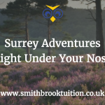 Places to visit in Surrey